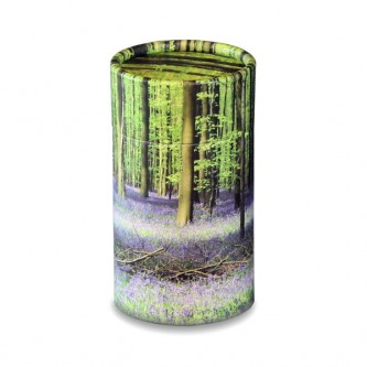 Bluebell Wood Scatter Tube - Mini